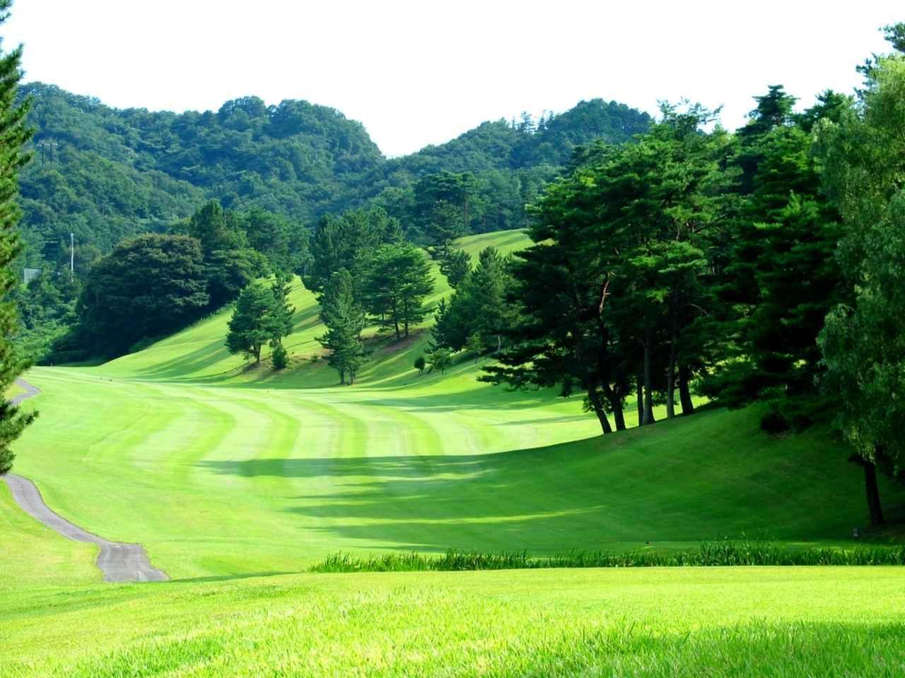 画像: 津久井湖ゴルフ倶楽部(27H・9209Y・P108)