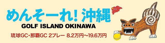 画像2: 50歳でのスウィング改造で九州オープンを制覇