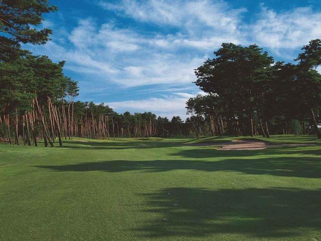 画像: 【紫雲ゴルフ倶楽部】日本海に注ぐ「加治川河口の砂丘に一流コースを造る」 一人の男の執念が赤松林の名コースを生んだ。設計は藤田欽哉、昭和40年 - ゴルフへ行こうWEB by ゴルフダイジェスト