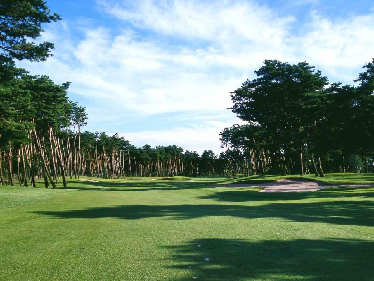 画像: 13番ホール/527㍎/パー5(加治川) 壮観な松林が正確なティショットを求める。2打目は落としどころが狭く感じられ、飛距離よりも正確性が求められる
