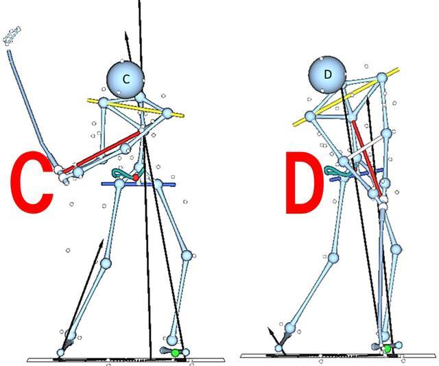 画像: Cの段階が最大に地面をプッシュしていて、Dではまた反力は小さくなる。ジャンプはこのプッシュの結果として生じるにすぎない
