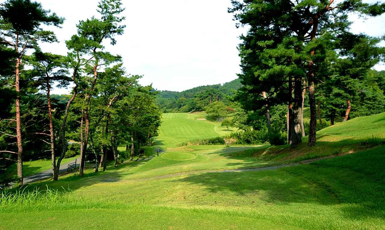 画像3: 唐沢ゴルフ倶楽部(三好コース18H・6934Y・P72、唐沢コース18H・6201Y・P72)三好は和泉一介、唐沢は陳清水が設計