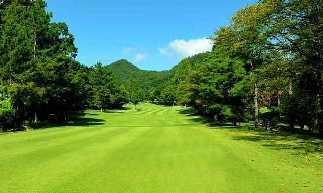 画像2: 唐沢ゴルフ倶楽部(三好コース18H・6934Y・P72、唐沢コース18H・6201Y・P72)三好は和泉一介、唐沢は陳清水が設計