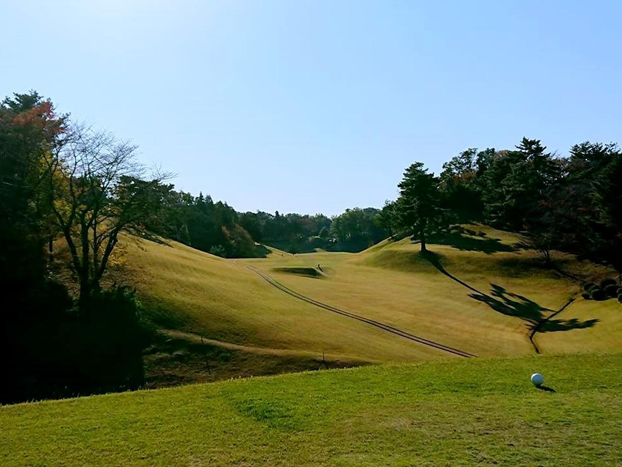 画像1: 東京国際ゴルフ倶楽部(18H・6615Y・P72)小田急線唐木田駅よりタクシー3分
