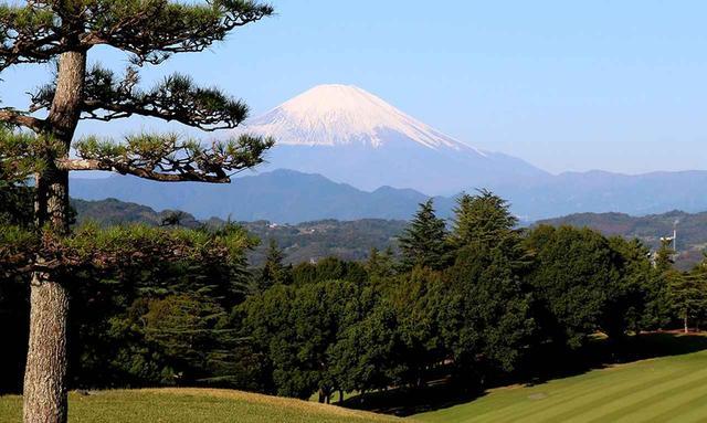 画像2: 平塚富士見カントリークラブ (平塚コース18H・6685Y・P72、大磯コース18H・6685Y・P72)、36ホールの丘陵コース
