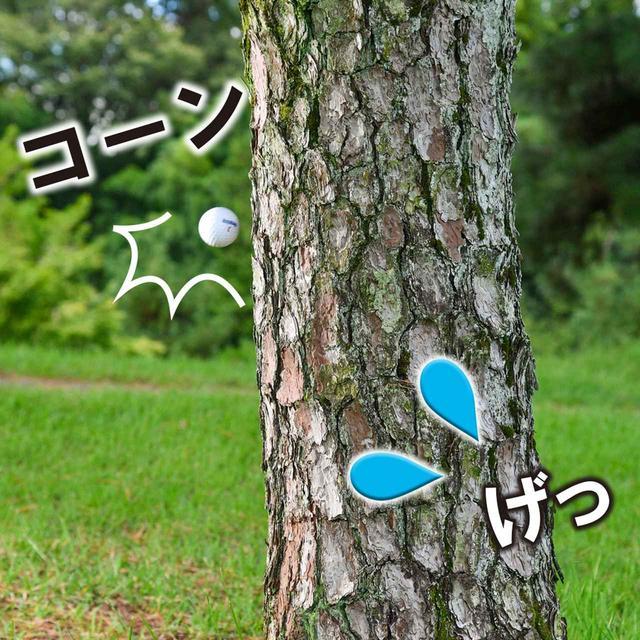 画像4: 【新ルール】打った球が自分のクラブに当たった!  罰あり? 罰なし?