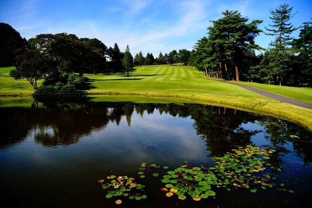 画像: 小林光昭設計コースならではの巨大な池
