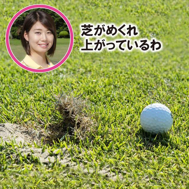 画像3: 【新ルール】めくれ上がった芝を押さえつけた。これって罰あり?