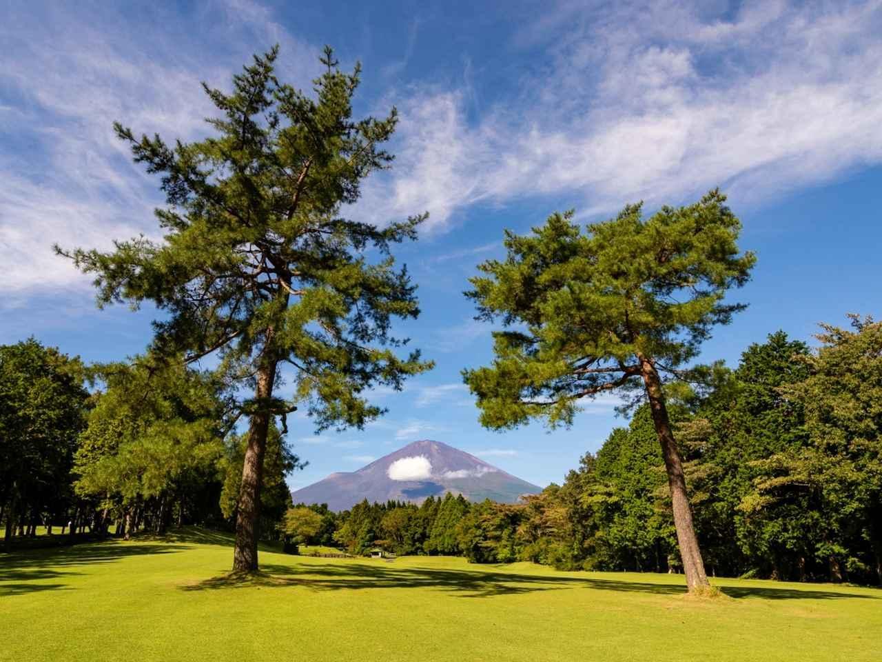 画像: 丹沢コース 7番ホール(373Y・P4)2本松の間に富士山