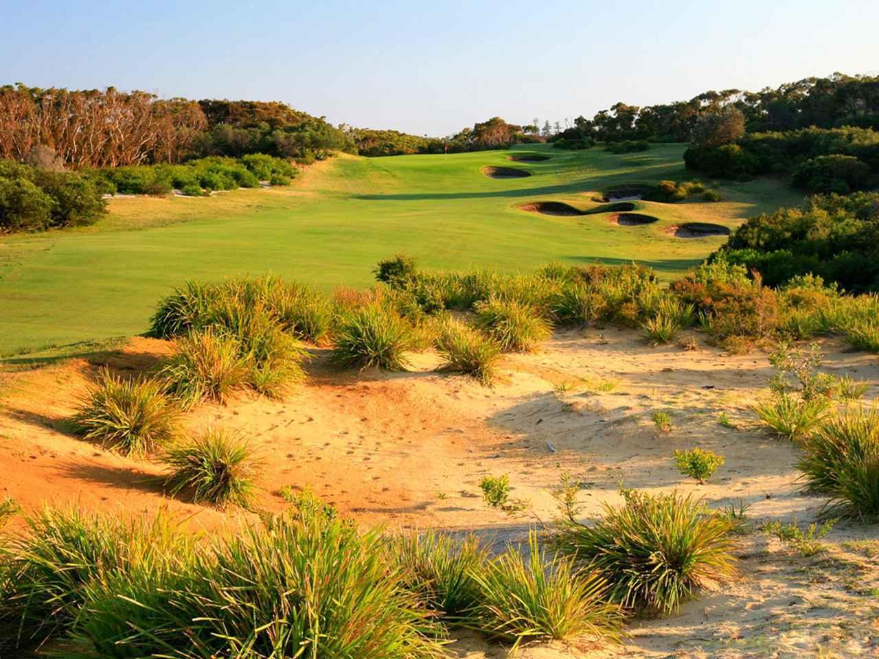 画像2: ニューサウスウェールズゴルフクラブ(NSW GolfClub)