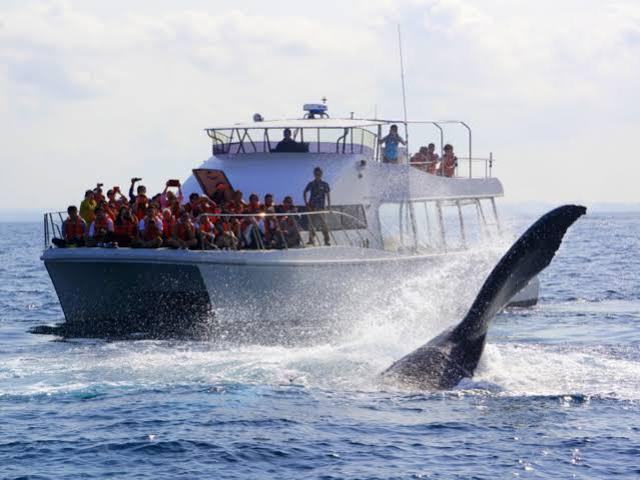 画像: 【沖縄・那覇】PGMゴルフリゾート沖縄でツーサム、宿泊は人気のザ・ナハテラス 2日間 1プレー