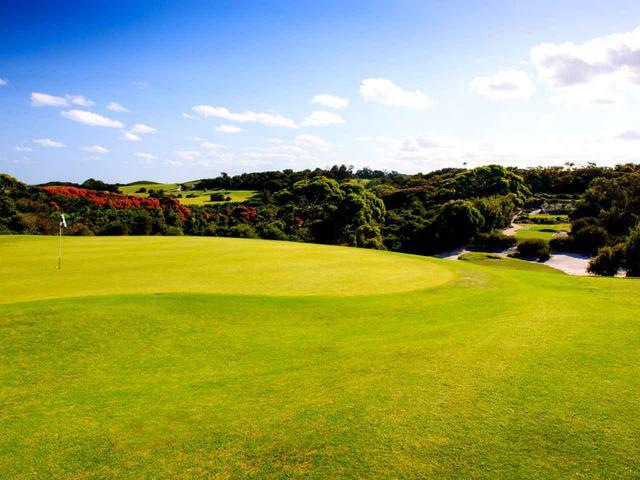 画像: リンクスでも適度なアップダウン、セントマイケルズ ゴルフクラブ