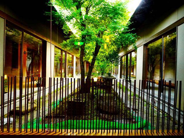 画像: さきしょう庵、中庭