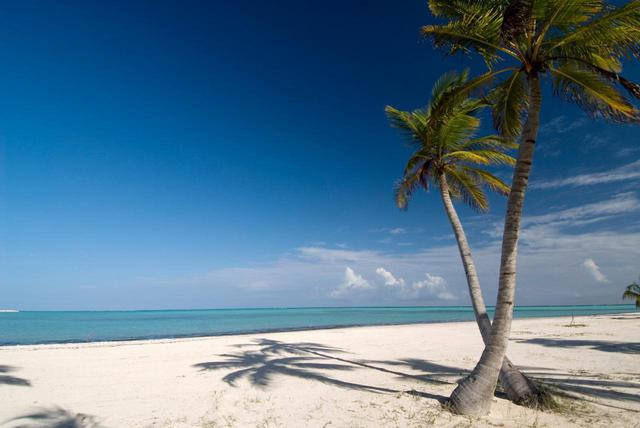 画像: 白い砂浜と美しい海と空が広がるカリブ海の国、ドミニカ共和国