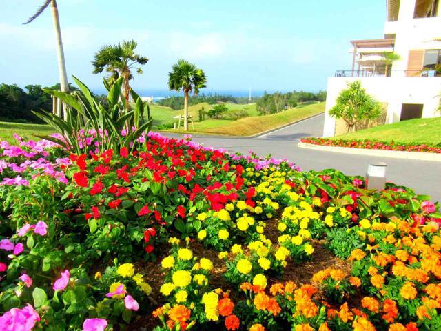 画像1: PGMゴルフリゾート沖縄を回る沖縄ゴルフ旅行です!