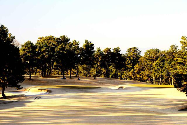 画像: 1番/428㍎/パー4 右が平成グリーン(L-93)、左が昭和グリーン(ペンクロス)