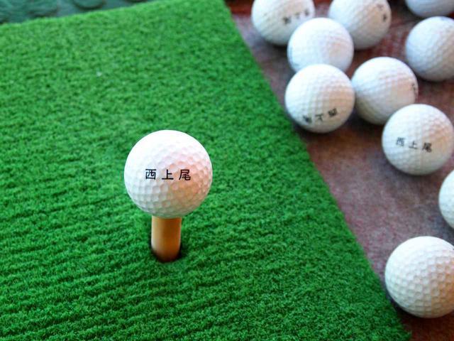 画像3: 西上尾ゴルフガーデン