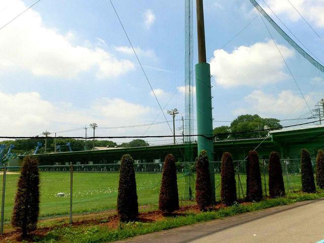 画像3: 平方ゴルフガーデン