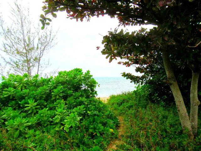 画像: 小径の先は紺碧の海。朝は人も少なくビーチをひとりじめです