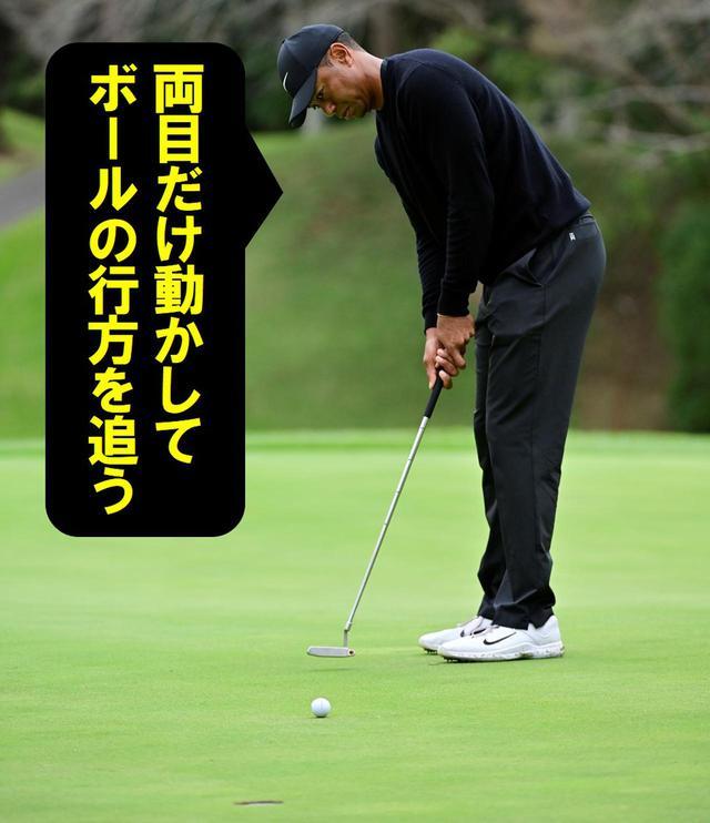 画像23: 【パット研究】タイガーの構えと打ち方、ギア選びに詰まった「パッティングの極意」、中井学プロが解説!