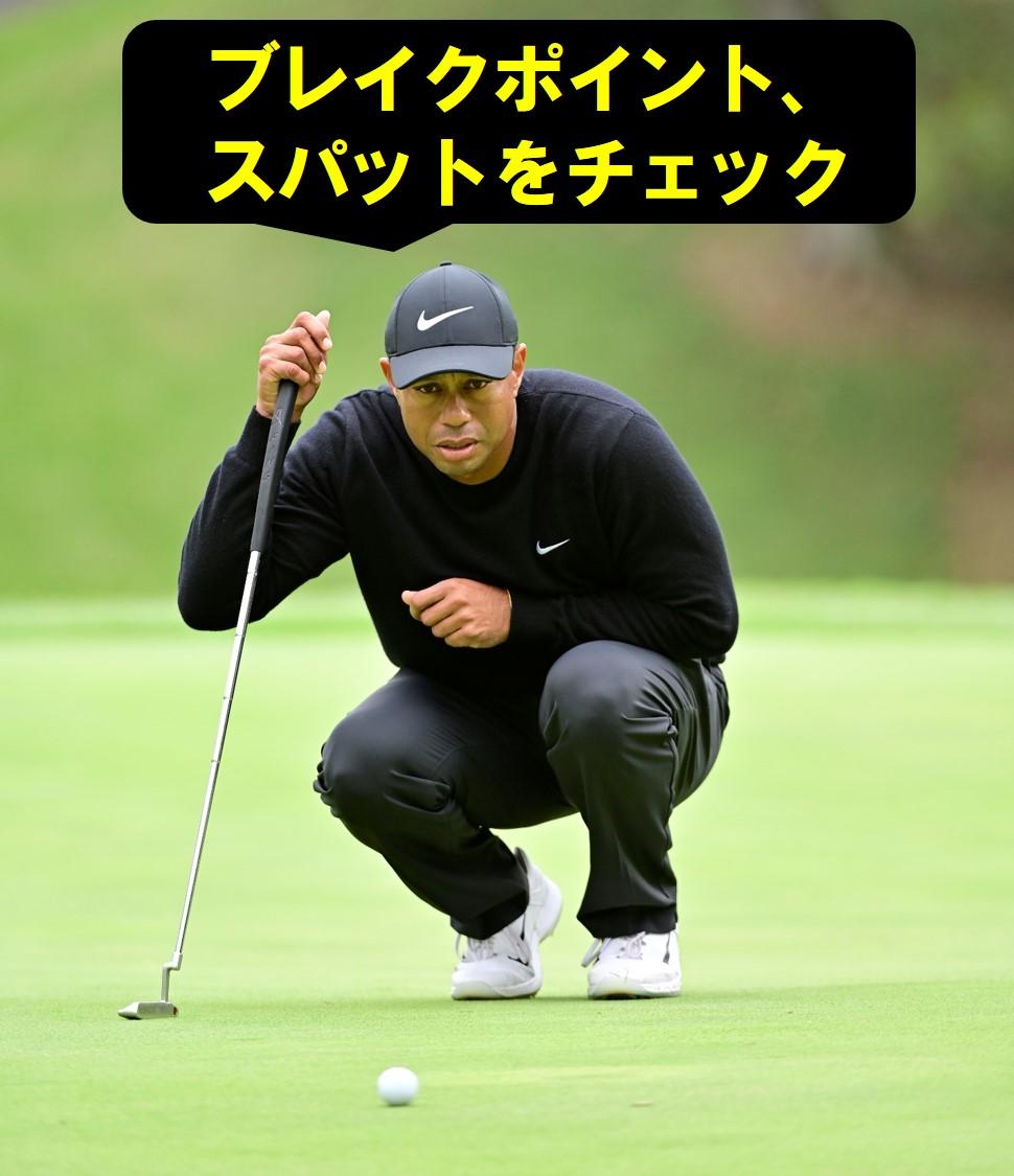 画像11: 【パット研究】タイガーの構えと打ち方、ギア選びに詰まった「パッティングの極意」、中井学プロが解説!