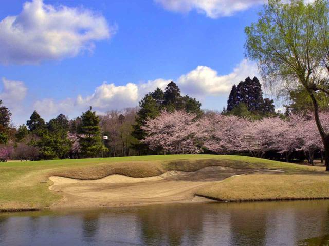画像: 東4番/165㍎/パー3 グリーン手前に池があるパー3。春になると桜が咲き誇る名物ホール