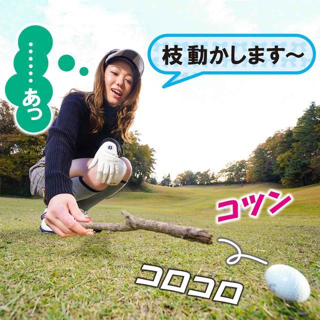 画像2: 【新ルール】小枝でうっかり球が動いてしまった!  どうする?