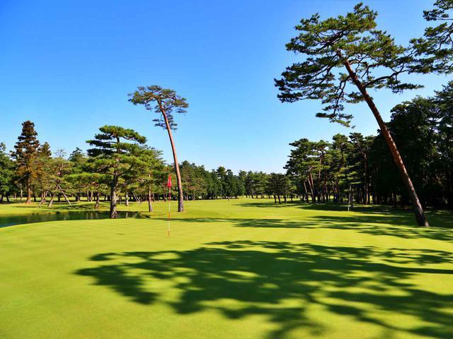画像: 武蔵CC笹井コース 井上誠一設計のフラットな林間コース。15番/354ヤード/パー4