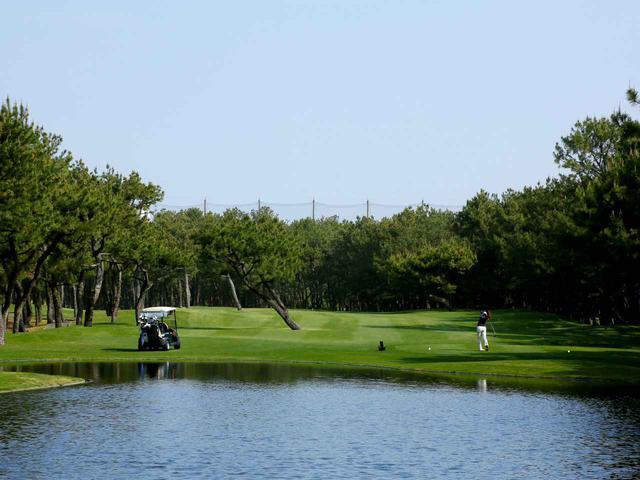 画像1: フェニックスCCのお隣りトム・ワトソンゴルフコース