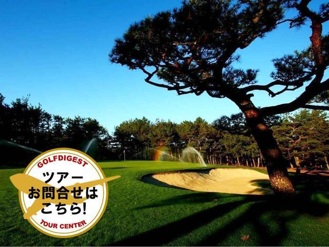 画像1: 【九州・宮崎】ダンロップフェニックストーナメントの舞台、フェニックスCCに挑戦 2日間 2プレー - ゴルフへ行こうWEB by ゴルフダイジェスト