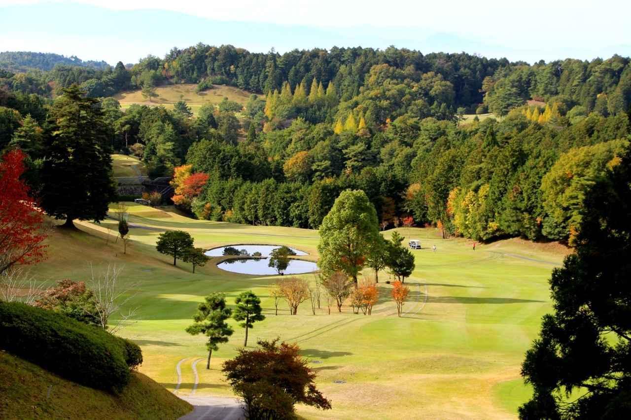 画像: ディアーパークゴルフクラブ【ゴルフ会員権・ゴルフ場身体検査】大阪市内から1時間、会員による会員のためのクラブライフ。コース改造を経て成熟したチャンピオンコース - ゴルフへ行こうWEB by ゴルフダイジェスト