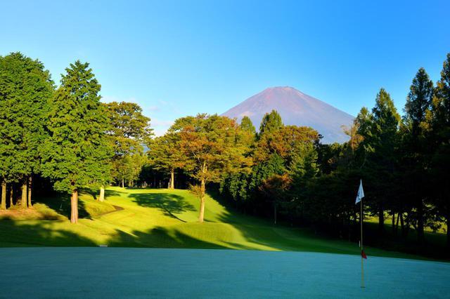 画像: 富士の麓の林間コース、富士御殿場GC