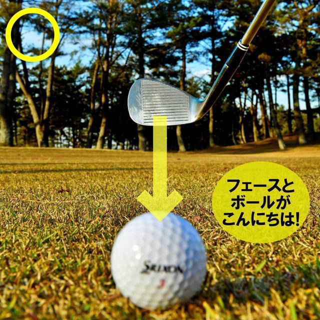 画像: フェースがボールを見続けるようにクラブを上げる。フェース面の向きを変えずにクラブを上げると、ヘッドを真っすぐ低く動かすことができ、入射角がゆるやかになる