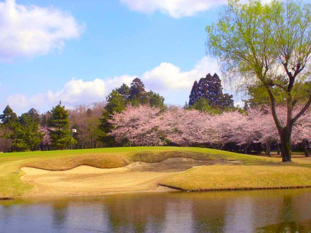 画像: 春には桜の名所としても知られる