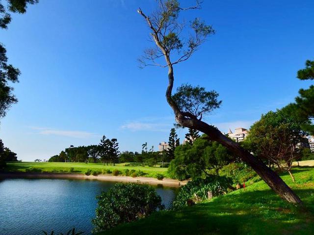 画像: 台湾ゴルフクラブ③