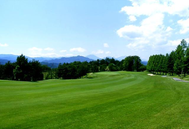 画像: 皐月ゴルフ倶楽部 鹿沼コース 両ベントの2グリーン