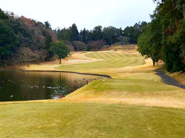 画像: 池が美しくも狙いどころを狭める13番パー4。池や木々が打ち出しを狭めるホールが多い
