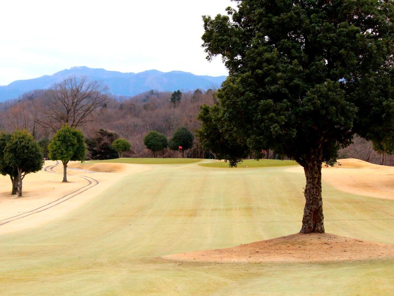 画像: 東コース4番(355Y・P4)奥に見える山は名高尾大権見。ニックネームは「高尾詣で」