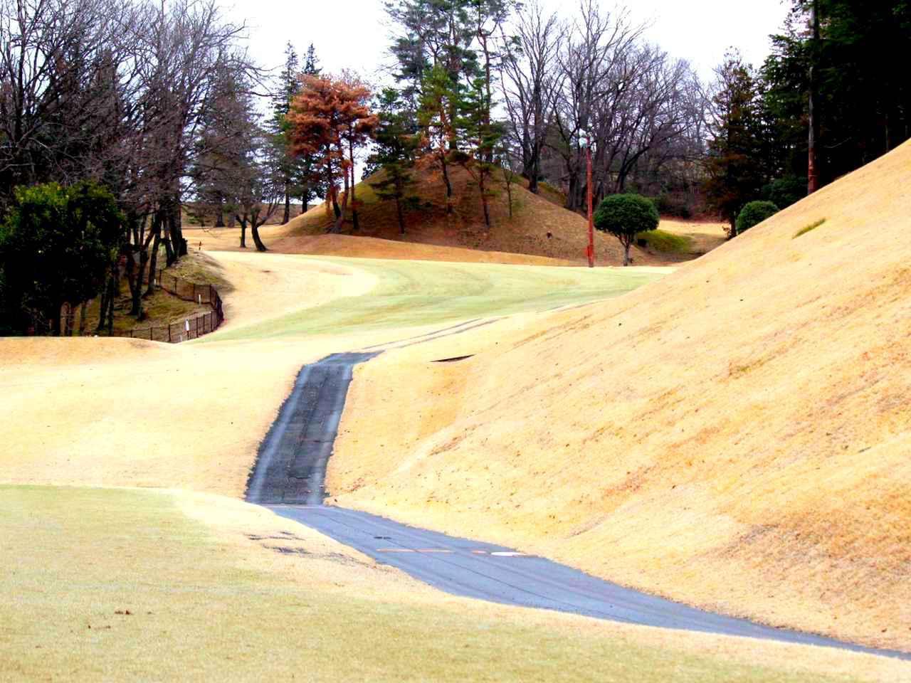 画像: ニックネームは「魔女の森」。不思議と多くのゴルファーが左の森に打ち込んでしまうのだとか
