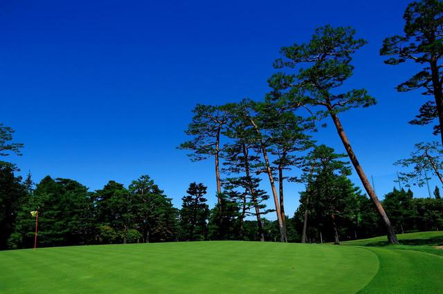 画像: 【日高カントリークラブ】20年、30年後を見越して松の木を多く残して開場。設計は植物学者 相馬正胤。昭和36年 - ゴルフへ行こうWEB by ゴルフダイジェスト