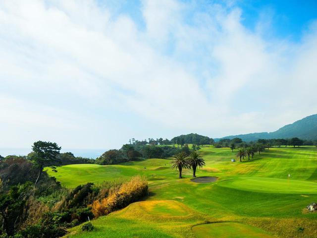 画像: 川奈ホテルゴルフコース 大島コースは、カート乗り入れ可のスループレーが基本