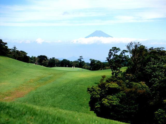 画像: 山の川奈とも呼ばれる、原生林に囲まれたフラットな林間コース