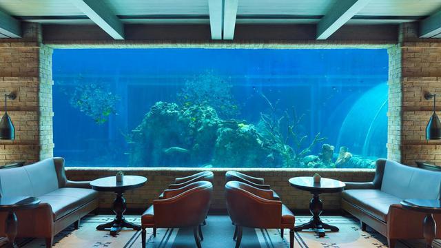 画像: バリ島発の水族館レストラン「Koral」海の中にいるような感覚です。「ジ・アプルバ・ケンピンスキ・バリ」