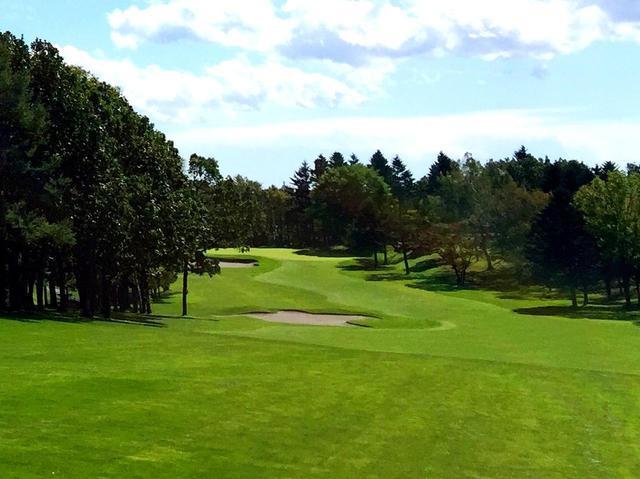 画像2: 札幌ゴルフ倶楽部 輪厚コース (18H・7063Y・P72)開場は1958年、北海道最初の井上誠一作品