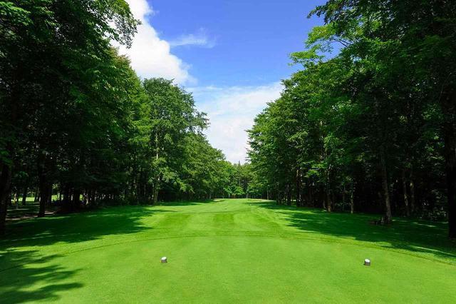 画像: 桂ゴルフ倶楽部(1番・419Y・P4) 真っすぐフラットなスタートホール。左右の木立が空中ハザード