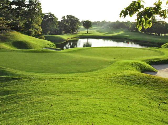 画像: ジャパンメモリアルゴルフクラブ