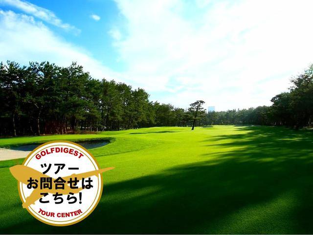 画像: 【宮崎・名コース】フェニックスカントリークラブとトム・ワトソンゴルフコースでゴルフ 2日間 2プレー(抽選で高級ホテル無料宿泊券プレゼント) - ゴルフへ行こうWEB by ゴルフダイジェスト