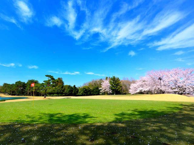 画像: 東松山カントリークラブ 東8番ホール(206Y・P3)