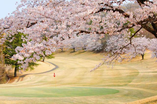 画像: 鳳凰ゴルフ倶楽部 東6番ホール(415Y・P4)