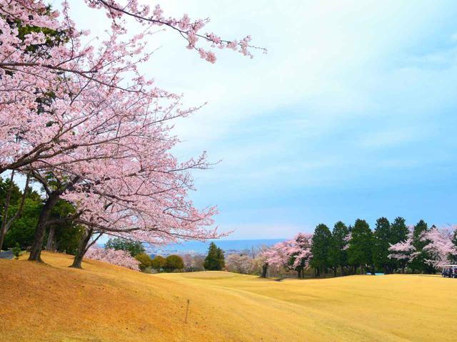 画像: 日立ゴルフクラブ 13番ホール(395Y・P4)